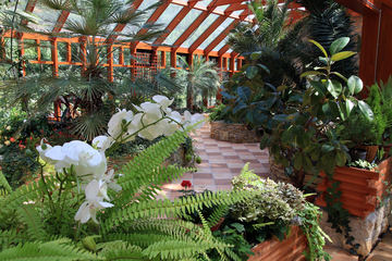 Galeria Ogród zimowy