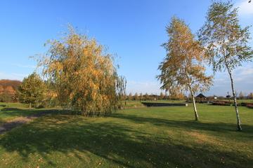 Galeria Jesień w ośrodku