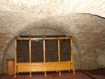 Galeria Grota solna z tężniami i ogrodem zimowym