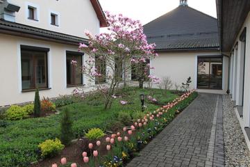 Galeria Kwitnący ośrodek